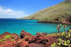 Linia brzegowa Rabida wyspa, Galapagos park narodowy, Ekwador obraz stock