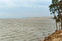 Linia brzegowa, sosny na nabrzeżu, piaskowata ziemia i sucha trawa na wybrzeżu, Obrazy Royalty Free