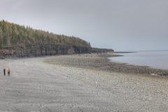 Linia brzegowa widok osaczony Funda, nowa Scotia, miejsce ogromni przypływy obrazy royalty free