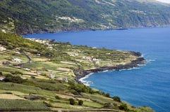 linia brzegowa wyspy pico zdjęcie royalty free