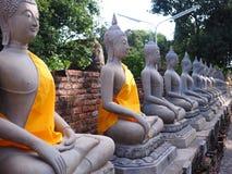 Linia Buddha statua, Ayutthaya, Tajlandia Fotografia Royalty Free