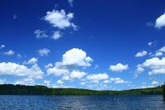 linia drzew lakeside obrazy royalty free