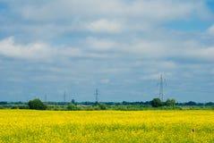 Linia energetyczna w polu z żółtym gwałtem fotografia stock