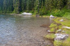 Linia horyzontu jeziora brzeg Fotografia Royalty Free