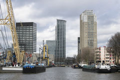 linia horyzontu rotterdamskiej Fotografia Royalty Free