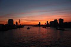 linia horyzontu rotterdamskiej Zdjęcie Royalty Free