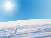 linia horyzontu zima Obraz Stock