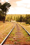 linia kolejowa Obrazy Royalty Free