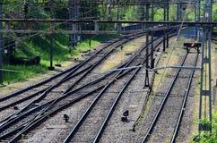 Linia kolejowa, Eisenbahnstrecke/ Zdjęcia Stock