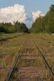 Linia kolejowa iść w odległość w drewnach Zdjęcia Stock