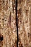 Linia kolejowa krawata tło Obraz Stock