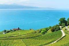 Linia kolejowa na Lavaux winnicy Tarasuje Jeziornego Genewa Szwajcaria Zdjęcia Royalty Free