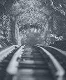 Linia kolejowa na stalowym moscie Zdjęcie Royalty Free