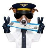 Linia lotnicza pilotowy steward sprawdza wewnątrz bilet Zdjęcie Stock