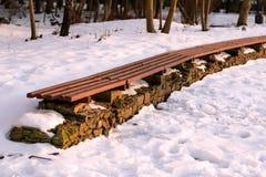 Linie der leeren Winterparkbank am sonnigen Tag Konzept von entspannen sich, Komfort, der verzierende Park, Frostwetter, schöne L stockfotografie