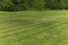 Linie des Grasschnittes auf dem Gebiet Stockfoto