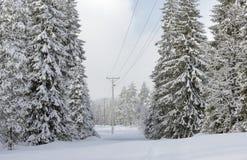 Linie energetyczne w zima krajobrazie Zdjęcia Royalty Free