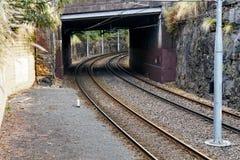 Linie Kolejowe w Rockowym rozcięciu Obraz Royalty Free