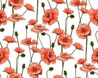 Linie-Kunst Mohnblumen auf Weiß Vector nahtloses Muster Lizenzfreie Stockbilder
