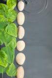 Linie von Steinen und von Blättern im Wasser Lizenzfreie Stockbilder