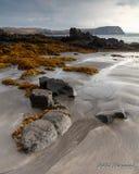 Linie w piasku w czasie odpływu morza obrazy stock