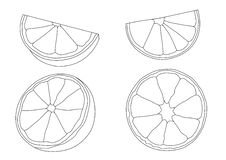 Linie Zitrone und orange frische Frucht vektor abbildung