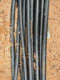 Linien von metallischem und von Lichtwellenleitern, Bau der optischen Network Connection der Kommunikation Stockbilder