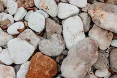 Linii brzegowej morza kamienie Zdjęcia Royalty Free