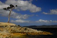 linii brzegowej tasmanian południowy Zdjęcia Royalty Free