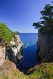 linii brzegowych 19 drzew Fotografia Royalty Free