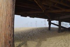 Linii brzegowych drzewka palmowe Obramiający Pod molem w mgle Zdjęcie Stock