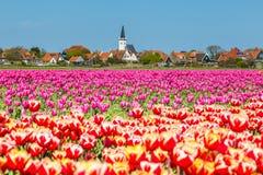 Linii horyzontu melina Hoorn Texel holandie Zdjęcie Stock