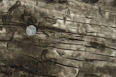 linii kolejowej kolca krawata wierzchołek Zdjęcie Stock