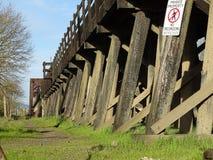 Linii kolejowej tresstle obraz royalty free