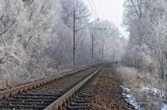 linii kolejowej zima Obrazy Stock