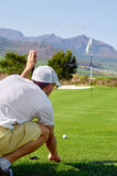 Lining up putt. Aiming golfer lining putt on green Royalty Free Stock Images