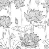 Liniowy bezszwowy wzór - lotosowy kwiat Obraz Stock