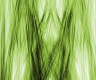 linjär fractal Royaltyfria Bilder