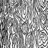 Linjär svart trätextur på den vita bakgrundsvektorbilden royaltyfri illustrationer