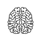 Linjär symbol för mänsklig hjärna Tunn linje illustration Nervsystemorgan Kontursymbol Vektor isolerad ?versiktsteckning stock illustrationer