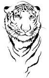 linjär tiger vektor illustrationer