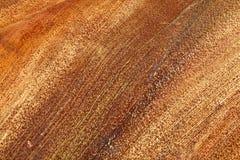 Linjära modeller och texturer på grund av palmbladet Royaltyfria Foton