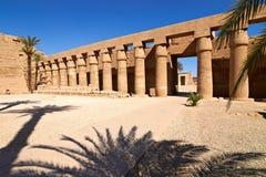 linjära perspektivsphinxes för kolonner Royaltyfri Fotografi