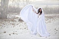 Linjal av snön arkivfoton