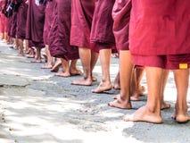 Linje av munkar Arkivfoton