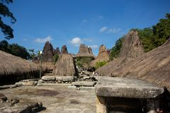 Linje av traditionella hus på Tarung den traditionella byn Arkivbilder