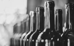 Linje av vinflaskor Närbild Flaskor för buteljera royaltyfri fotografi
