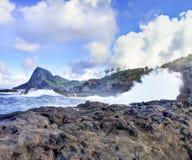 Linje för kust för öMaui klippa med hav. Hawaii. Royaltyfria Bilder