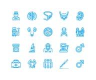 Linje symboler för Urologyvektorlägenhet Urolog blåsa, njure, binjurar, prostata Linjära medicinska pictograms med royaltyfri illustrationer