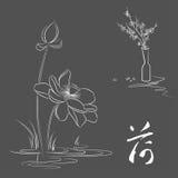 Linje teckning av lotusblomma- och plommonblomningen. Royaltyfri Fotografi